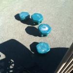 Stepping stones at Ben Brenman Park in Alexandria VA