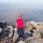 Mount Vernon Trail: Belle Haven Marina