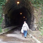 Spooky Tunnel at Windmill Hill Park