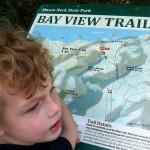 Bay View Trail at Mason Neck Park