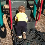 Climbing at Ridgeview Park