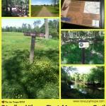 Stroller Hike: Manassas Battlefield Park First Manassas Trail