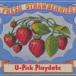 U Pick Strawberries Playdate