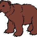 bear-brown