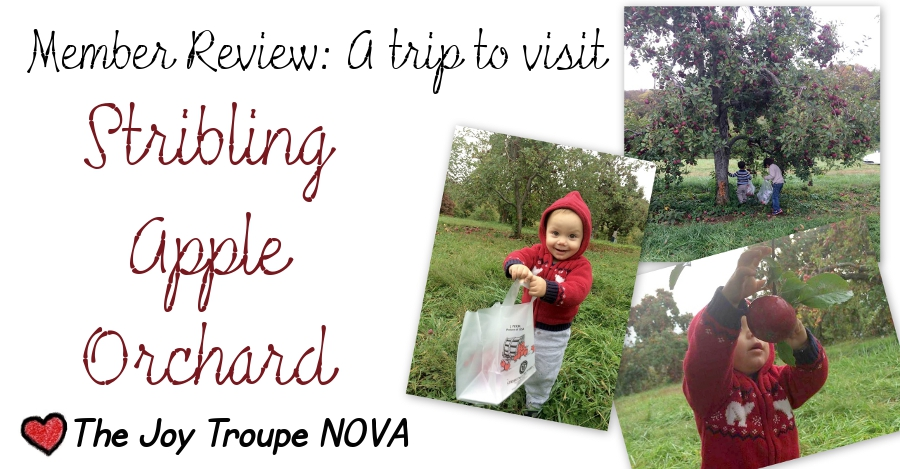Stribling Orchard member review Joy Troupe NOVA by Dana Sasser